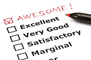 Client evaluation form with awesome box checked off - That White Paper Guy